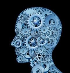 Beyin Egzersizin Yararı